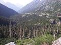 White Pass, Alaska 4.jpg