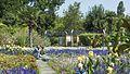 Wien 22 Blumengärten Hirschstetten e.jpg