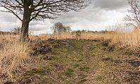 Wijnjeterper Schar, Natura 2000-gebied provincie Friesland 02.jpg
