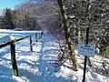 Winterwanderung, Wolfratshausen, 8 - panoramio.jpg
