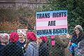 Women's March Washington, DC USA 7.jpg