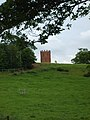 Worfield Folly - geograph.org.uk - 442161.jpg