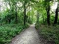 Yürüyüş Yolu... - panoramio.jpg