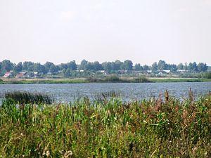 Nekrasovsky District - Lake Yakhrobolskoye in Nekrasovsky District