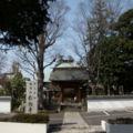 Yogoji 06a7817q.jpg