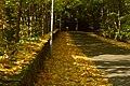 Złota droga do zamku Frydlant - panoramio.jpg
