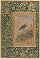 """Diving Dipper and Other Birds"", Folio from the Shah Jahan Album MET DP246541.jpg"