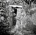 """""""Lajb?n"""" iz siršča (notranjost), Breg 1953 (2).jpg"""