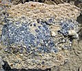 """Turritella Agate"" (partially chertified fossiliferous lacustrine limestone) (Laney Member, Green River Formation, Middle Eocene; North Barrel Springs Draw, south of Wamsutter, Wyoming, USA) 1 (19687757408).jpg"