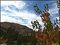 (((منظره پاییزی ))) - panoramio (1).jpg
