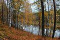 Золотая осень 4.jpg