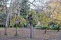ИнтересноДърво.jpg