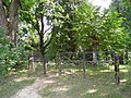 Кладбище Цепурниеку-4 (le cimetière Cepurnieku) - panoramio.jpg