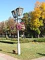 Корпусний сад в центрі Полтави.JPG