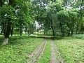 Парк ім. Т. Г. Шевченка, Прилуцький район, смт. Линовиця 74-241-5030 06.jpg