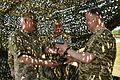 Президент Петро Порошенко на церемонії випуску Харківського університету Повітряних Сил ім. Івана Кожедуба (27263912544).jpg