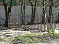 Приютино. Ограда.jpg
