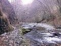"Резерват ""Стара река"" 03.jpg"