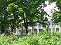 Солнечный. 4 июня 2013г. - panoramio (25).jpg
