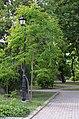 Территория городского сада в Киеве. Весна 2019. Фото 15.jpg