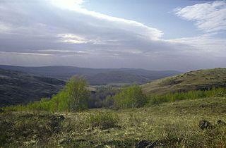 Baymaksky District District in Republic of Bashkortostan, Russia