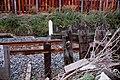 和歌山線(旧線)-23.jpg