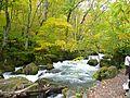 奧入瀨溪流 Oirase Mountain Stream - panoramio (1).jpg