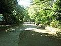 小柳公園 - panoramio (7).jpg