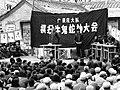 广录庄大队 横扫牛鬼蛇神大会.jpg