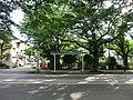 木漏れ日のバス停 - panoramio.jpg
