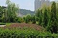 澳门路凼城 Macau Cotai City China Xinjiang Urumqi Welcome you to to - panoramio (17).jpg