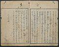 紅毛雜話-Chats on Novelties of Foreign Lands (Kōmōzatsuwa) MET 2007 49 334 007.jpg