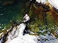 高州深镇自然保护区附近的瀑布潭子20140614 - panoramio (11).jpg