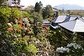 高野寺 - panoramio.jpg