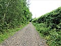 -2019-06-07 Back lane next to Links chalet park, Mundesley (3).JPG