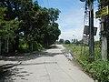 0171jfCutcut Pulong Gubat Tiaong Guiguinto Bulacan Roadsfvf 14.jpg