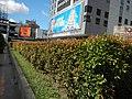 01910jfQuezon Avenue MRT Station North EDSA Buildings Eton Centrisfvf 24.jpg