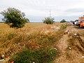 08.2015 - panoramio (160).jpg