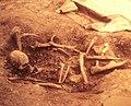 103 Musée préhistoire Carnac.jpg