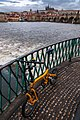 18-02-01-Birdy-in-Prag-RalfR RRK0995.jpg