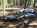1947 Snell crash wreckage 05 - Fremont NF Oregon.jpg