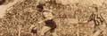 1953 Rosario Central 4-River Plate 1 -1.png