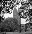 19870923115NR Dobbertin Klosterkirche.jpg