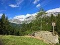 1 alpe Devero, il Grande Est.jpg