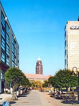 Ferdinandstraße in Dresden