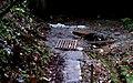 2006-12-01 Lilienhahn-Quelle 2a.jpg