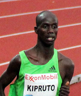 Image illustrative de l'article Brimin Kipruto