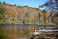 2012 Fall Color in the Chattahoochee National Forest (8113836041).jpg