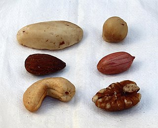 Mixed nuts snack food consisting of any mixture of mechanically or manually combined nuts
