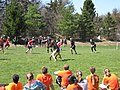 2015 King's Cup Quidditch Tournament, Syracuse, NY-01.JPG